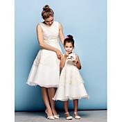 A-Line Jewel Neck Knee Length Lace / Orga...