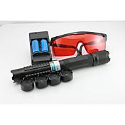 Flashlight Shaped Laser Pointer 445-450nm...