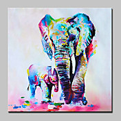 Oil Painting Hand Painted - Pop Art Moder...