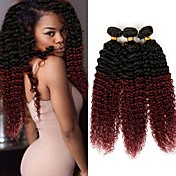Brazilian Hair Kinky Curly Virgin Human H...