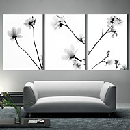 Canvastaulu taide Quiet Flowers Set of 3