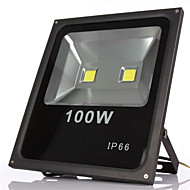 2leds 100W חם / לבן קר הוביל פרויקטי מנורת קיר אור חיצוניים עמידים למי הארת IP65 גינה הובילה אורות מבול (ac85-265v)