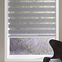 preiswerte Fenster Schürze-grau flach schiere Schatten