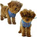 preiswerte Halsbänder, Geschirre und Leinen für Hunde-Hund Geschirre Atmungsaktiv Nylon Maschen Gelb Rose Rot Blau