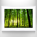 cheap Pillow Covers-Framed Art Print Famous Landscape Still Life Wall Art, PS Material With Frame Home Decoration Frame Art Living Room Bedroom Bathroom