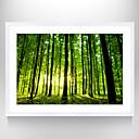 billige Trykk-Innrammet Kunstrykk Kjent Landskap Still Life Veggkunst, Polystyrene Materiale med ramme Hjem Dekor Rammekunst Stue Soverom Baderom
