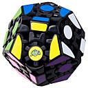 billige Rubiks kuber-Rubiks kube WMS Utstyr MegaMinx Glatt Hastighetskube Magiske kuber Kubisk Puslespill profesjonelt nivå Hastighet Klassisk & Tidløs Barne Voksne Leketøy Gutt Jente Gave