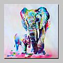 povoljno Ulja na platnu-Hang oslikana uljanim bojama Ručno oslikana - Pop art Moderna Platno