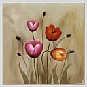 baratos Pinturas Florais/Botânicas-Pintura a Óleo Pintados à mão - Floral / Botânico Abstracto Tela de pintura