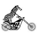 billige Vægklistermærker-Dyr Transport Vægklistermærker Fly vægklistermærker Dekorative Mur Klistermærker, Vinyl Hjem Dekoration Vægoverføringsbillede Vindue Væg