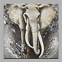 cheap Animal Paintings-Oil Painting Hand Painted - Abstract / Animals Modern Rolled Canvas