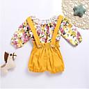 ieftine Pantaloni Bebeluși-Bebelus Fete Simplu / Casual Floral Manșon Lung Bumbac Set Îmbrăcăminte / Copil