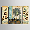 cheap Brooches-Print Stretched Canvas Prints - Animals Floral / Botanical Modern