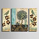 abordables Laminados en lienzo-Estampado Laminados en lienzo - Animales Floral / Botánico Modern Tres Paneles