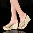 זול כפכפים ונעלי בית לנשים-בגדי ריקוד נשים נעליים סיליקון קיץ נוחות כפכפים & כפכפים עקב טריז זהב / כסף