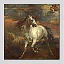 ieftine Picturi în Ulei-Hang-pictate pictură în ulei Pictat manual - Natură moartă Modern pânză