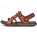 Недорогие Мужские сандалии-Муж. Комфортная обувь Кожа Лето На каждый день Сандалии Черный / Коричневый