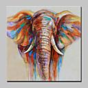 abordables Peintures d'Animaux-Peinture à l'huile Hang-peint Peint à la main - Abstrait / Pop Art Moderne Sans cadre intérieur