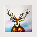 זול ציורים מופשטים-ציור שמן צבוע-Hang מצויר ביד - מופשט חיות מודרני כלול מסגרת פנימית