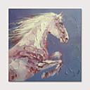 hesapli İnsan Resimleri-Hang-Boyalı Yağlıboya Resim El-Boyalı - Hayvanlar Pop Art Modern Iç çerçeve olmadan