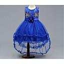 זול תחפושות בנושאי טלוויזיה וסרטים-נסיכה א-סימטרי שמלה לנערת הפרחים  - טול ללא שרוולים עם תכשיטים עם אפליקציות / פפיון(ים) על ידי LAN TING Express