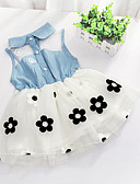 cheap Girls' Clothing Sets-Girls' Floral Floral / Patchwork Sleeveless Long Cotton Dress White