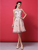 Χαμηλού Κόστους Φορέματα Χορού Αποφοίτησης-Γραμμή Α / Πριγκίπισσα / Εφαρμοστό & Εμβαζέ Illusion Seckline Μέχρι το γόνατο Οργάντζα Χοροεσπερίδα Φόρεμα με Χάντρες με TS Couture®