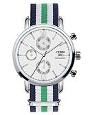 baratos Aço Inoxidável-SINOBI Homens Relógio de Pulso Calendário / Cronógrafo / Impermeável Aço Inoxidável Banda Amuleto Verde