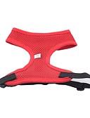 preiswerte Herren Unterwäsche & Socken-Hund Geschirre Hundekleidung Solide Gelb Rot Grün Blau Rosa Nylon Kostüm Für Haustiere Herrn Damen Wasserdicht Modisch