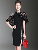 preiswerte Damen Kleider-Damen Ausgehen Street Schick Bodycon Kleid - Spitze Gitter, Solide Übers Knie Ständer Schwarz