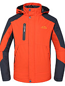 cheap Men's Downs & Parkas-Deshengren® Men's Hiking Jacket Outdoor Winter Windproof, Waterproof, Thermal / Warm Winter Jacket / Top Skiing / Camping / Hiking / Climbing / Breathable / Breathable