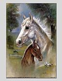 tanie Modne czapki i kapelusze-Hang-Malowane obraz olejny Ręcznie malowane - Zwierzęta Zwierzęta Brezentowy