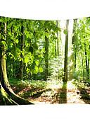 olcso Egzotikus férfi alsónemű-Landscape Csendélet Fali dísz 100% Poliészter Klasszikus Modern Wall Art, Fali gobelinek nak, -nek