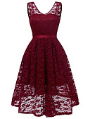 cheap Romantic Lace Dresses-Women's Lace Party / Club Basic / Street chic Skater Dress - Solid Colored Lace V Neck Spring Pink Navy Blue Wine L XL XXL