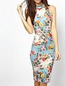 ieftine Rochii de Damă-Pentru femei Șic Stradă / Elegant Bumbac Zvelt Pantaloni - Floral Imprimeu Talie Înaltă Albastru piscină