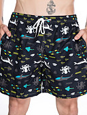 cheap Men's Swimwear-Men's Sporty / Basic Bottoms - Geometric Swim Trunk