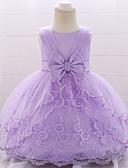 Χαμηλού Κόστους Βρεφικά φορέματα-Μωρό Κοριτσίστικα Ενεργό / Βασικό Πάρτι / Γενέθλια Μονόχρωμο Δαντέλα Αμάνικο Ως το Γόνατο Βαμβάκι / Πολυεστέρας Φόρεμα Ανθισμένο Ροζ