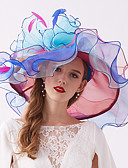 billige Quinceanera Kjoler-organza / Fjær Kentucky Derby Hat / fascinators / Hodepryd med Fjær / Blomst / Lag-på-lag 1 Deler Bryllup / utendørs Hodeplagg