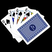 ポーカー用のカードを再生するパーソナライズされたギフト青いチェック柄