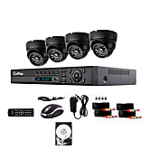 liview®700TVL屋外の昼/夜の防犯カメラと4CHのHDMI 960H DVRのシステムは、ハードドライブを1TB