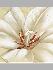 Pintados à mão Floral/Botânico Modern 1 Pça. Tela Pintura a Óleo For Decoração para casa