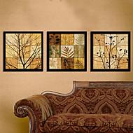 Blomstret/Botanisk Innrammet Lerret / Innrammet Sett Wall Art,PVC Svart Ingen Passpartou med Frame Wall Art