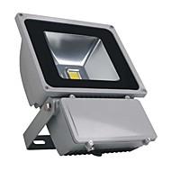 100W 8000Lm 2800-3200K IP65ウォームホワイトプロジェクターライト(AC110-220V)