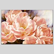 billiga Stilleben-Hang målad oljemålning HANDMÅLAD - Stilleben Klassisk Europeisk Stil Moderna Duk