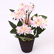 billige Kunstige blomster-1 1 Gren Polyester Kurvplante Bordblomst Kunstige blomster 3.9*3.5