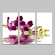 cheap Prints-Romance Leisure Botanical Modern Pop Art Three Panels Vertical Print Wall Decor Home Decoration