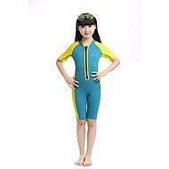 hesapli Blue Dive®-Bluedive Erkek Kadın's Çocuklar için 2mm Kısa Dalış Elbisesi Sıcak Tutma Hızlı Kuruma Ultravioleye Karşı Dayanıklı Ön Fermuar Tam Kaplama