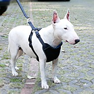 犬 ハーネス リード 車内用ドッグリード/犬用シートベルト 調整可能 / 引き込み式 高通気性 車内向け ランニング ソリッド ファブリック ナイロン ブルー