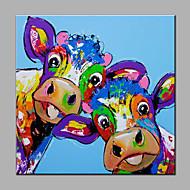 Handgeschilderde Dieren Vierkant,Modern Eén paneel Canvas Hang-geschilderd olieverfschilderij For Huisdecoratie