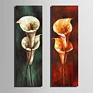 Kézzel festett Virágos / Botanikus Függőleges,Retro Két elem Vászon Hang festett olajfestmény For lakberendezési